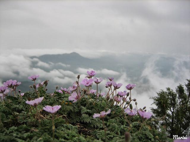 fotos-de-nubes-Serra-Mariola
