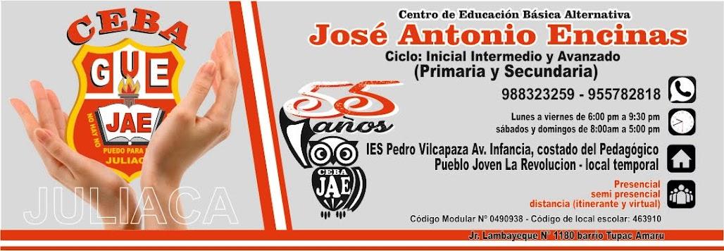 """CEBA """"José Antonio Encinas"""" Juliaca - Ciclo Avanzado"""