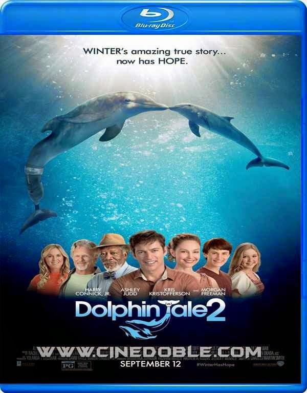 La Gran Aventura de Winter el Delfín 2 (2014) 1080p Latino