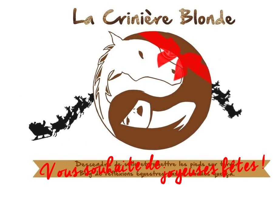La Crinière Blonde (mais foncée !) vous parle de ses réflexions équestres.