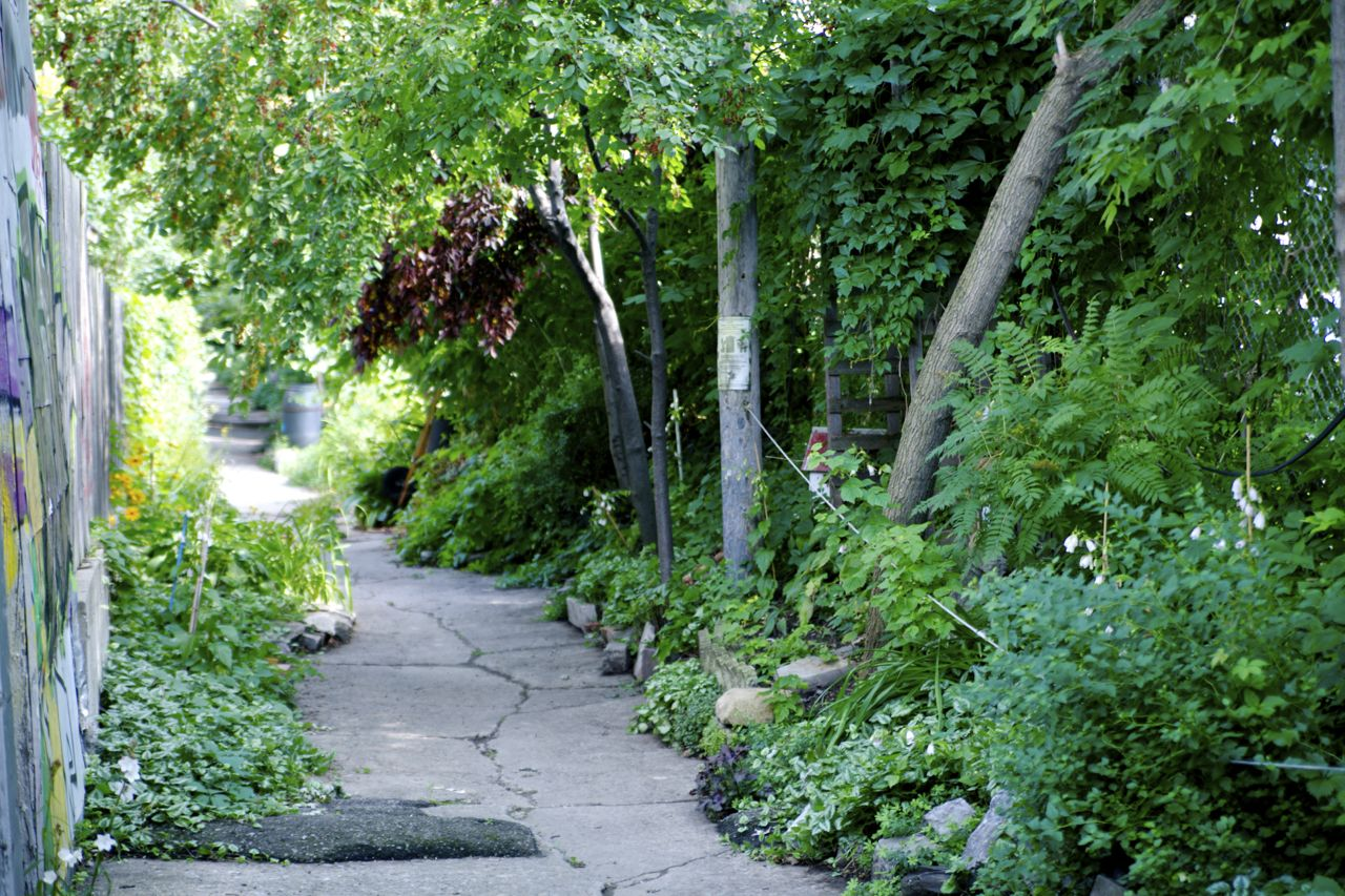 Beyond Greens: The Green Alleys of Montreal