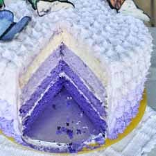foto ombre cake 4