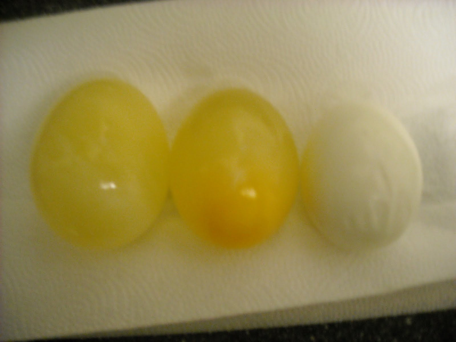 egg osmosis sample2 lab