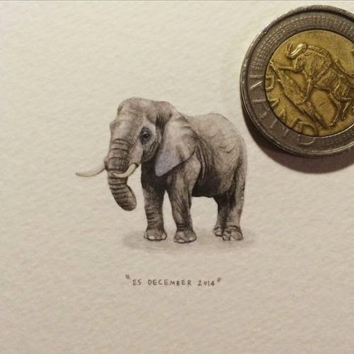 10-African-Elephant-Lorraine-Loots-Miniature-Paintings-Commemorating-Special-Occasions-www-designstack-co