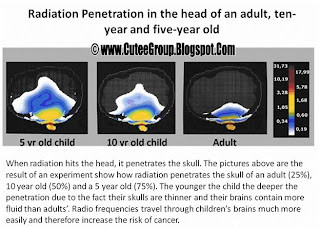 Radiation Penetration in the head of and adult, ten-year and five-year old Important Info GSM awareness