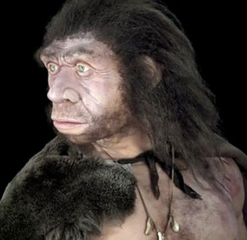 http://2.bp.blogspot.com/-Om9bnYyMF3A/UrxHUkfhSiI/AAAAAAAA6Ok/Kn6yguPAeH4/s1600/Neanderthal_01.jpg