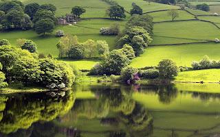 Greeny Land