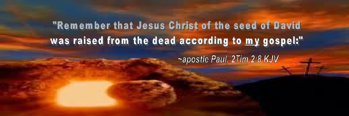 paul the apostle the servant of christ