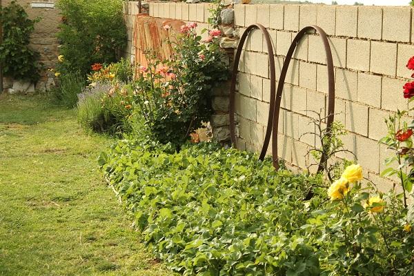 Jardín-huerto y plantación de fresas