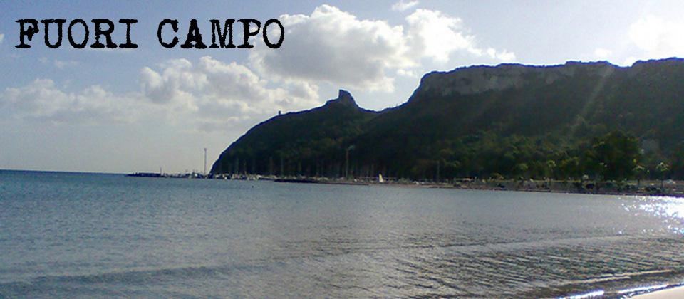 FUORI CAMPO - il blog di Michele Medda