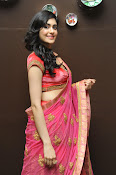 Adah Sharma Gorgeous in Pink Saree-thumbnail-17