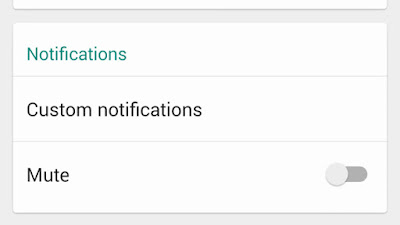 WhatsApp Custom notifications