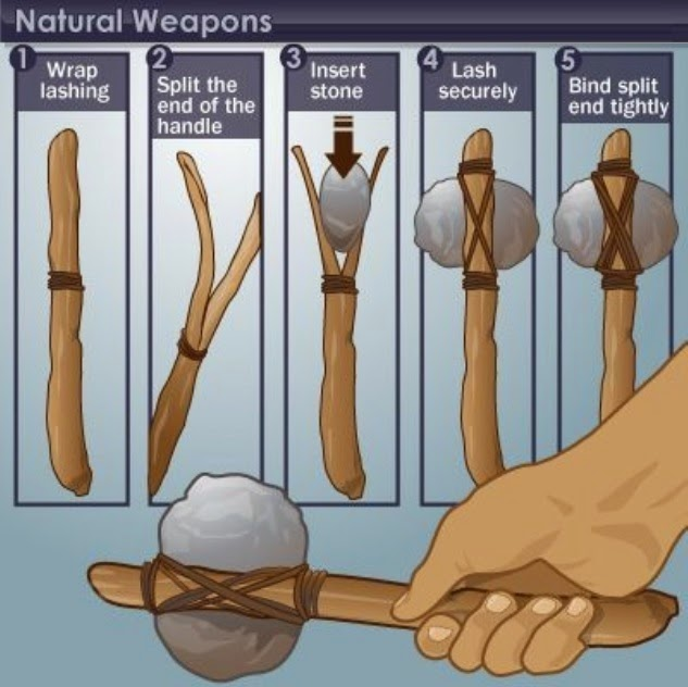Natural Weapons