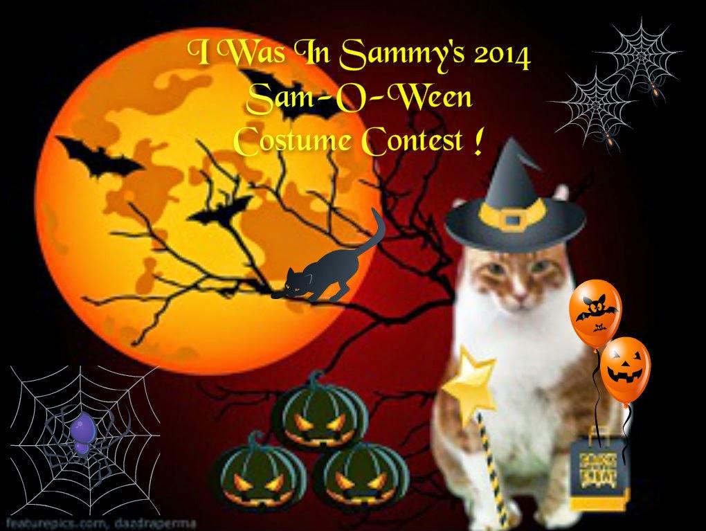 SAMMY O WEEN'S CONTEST