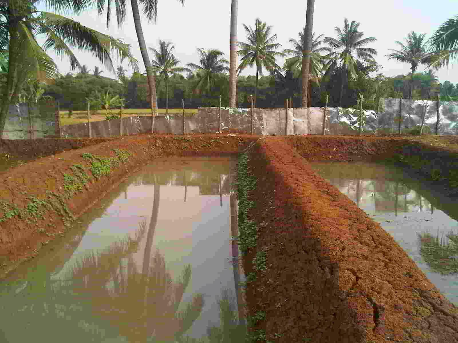 Kolam Tanah, Cara membuat kolam tanah