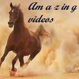 Am a z in g videos