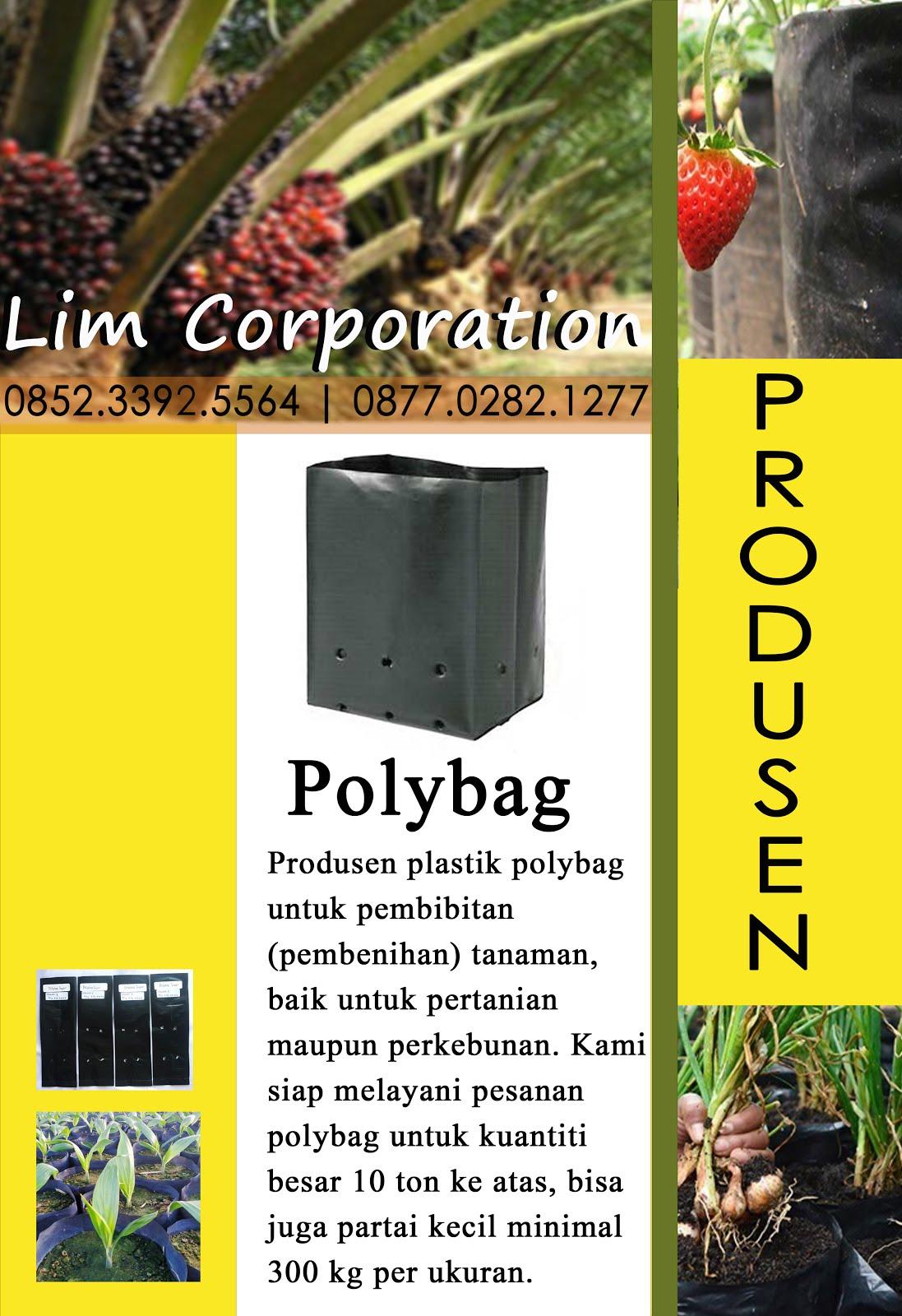 Polybag