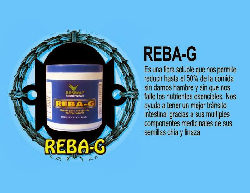REBA - G