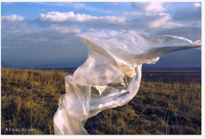 Cosmos,Fine art,Masterpiece,Angel Gruev,exalism
