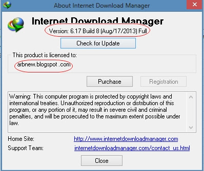 Internet Download Manager 6.17 Build 8 Terbaru Full Patch
