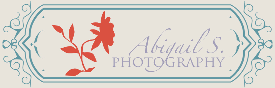 Abigail Shamburger Photography
