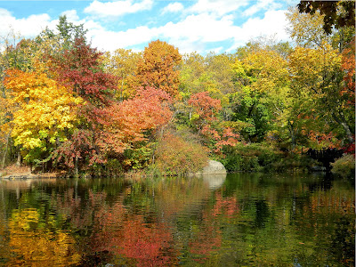 Autumn Fall colors in Central Park. the Lake and Ramble