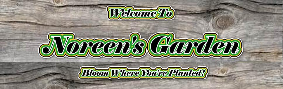 Noreen's Garden