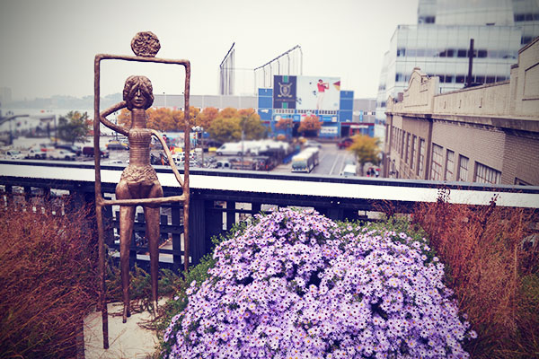 New York High Line Blumen Oktober 2013