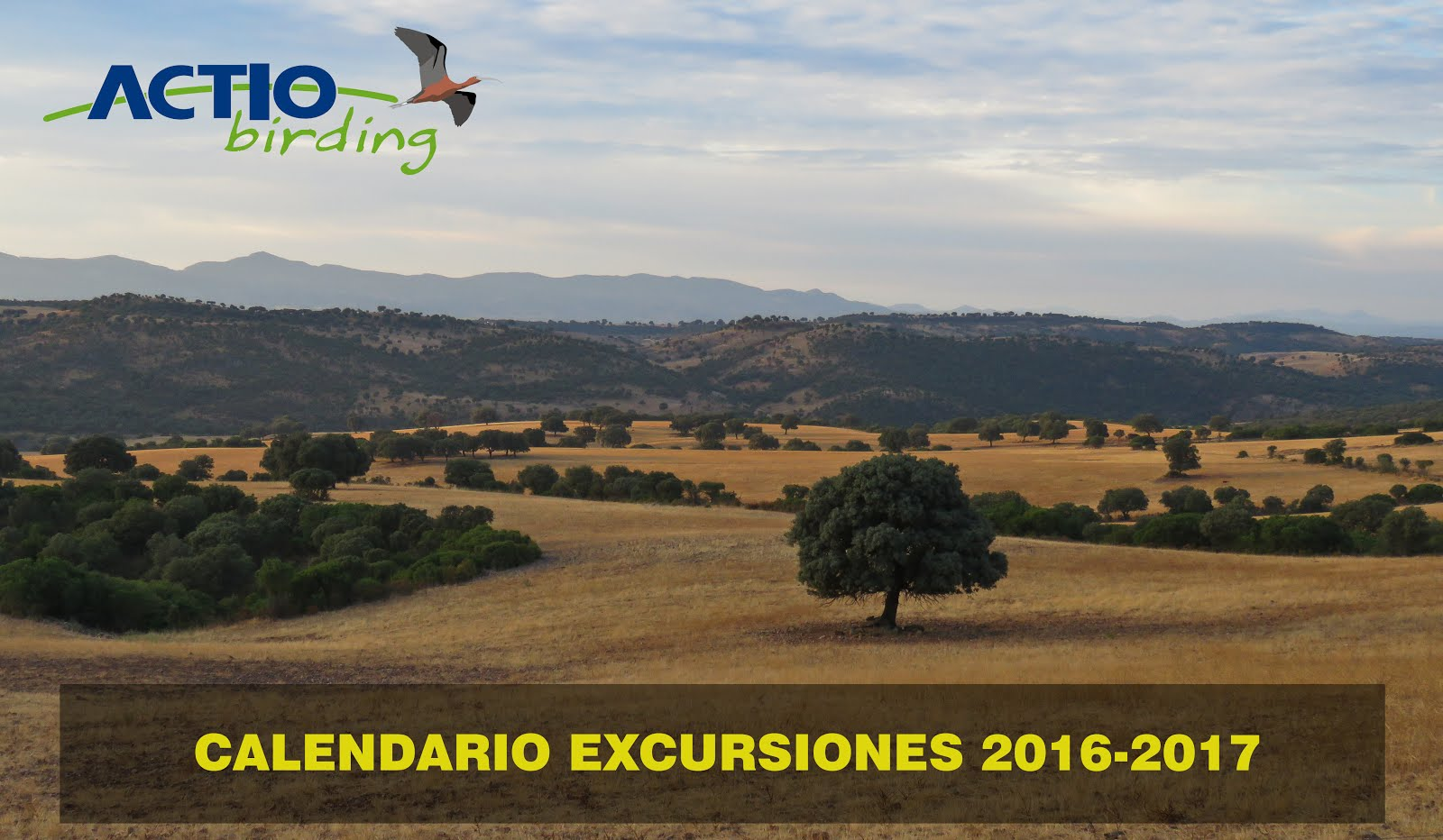 EXCURSIONES 2016-2017