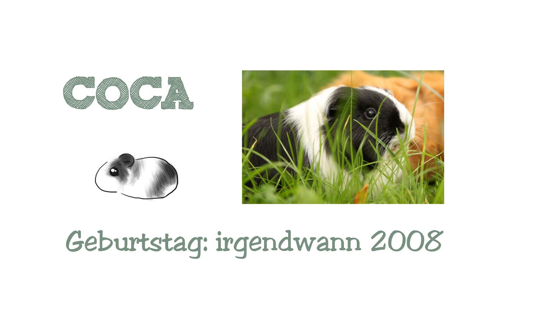 http://wutzdoc.blogspot.de/2013/09/mit-coffein.html