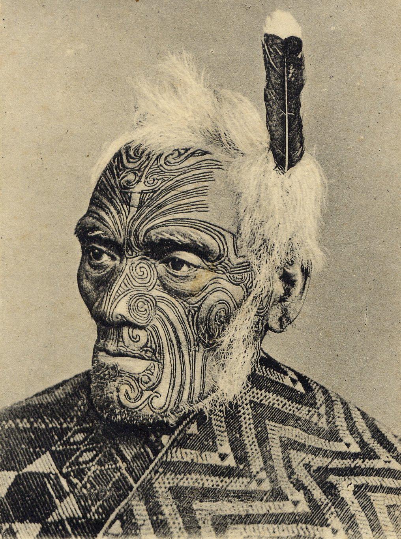 wild kingdom maori tribe. Black Bedroom Furniture Sets. Home Design Ideas