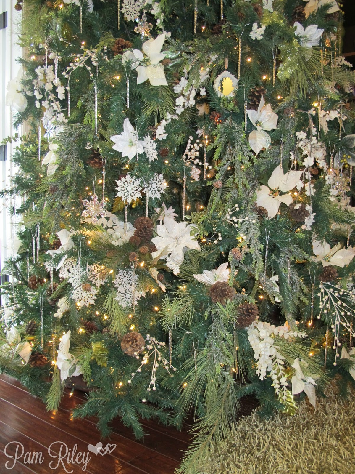 Different types of christmas trees pictures - Final Best Tall Tree Close Up2015 11 20 02 52 24 Jpg