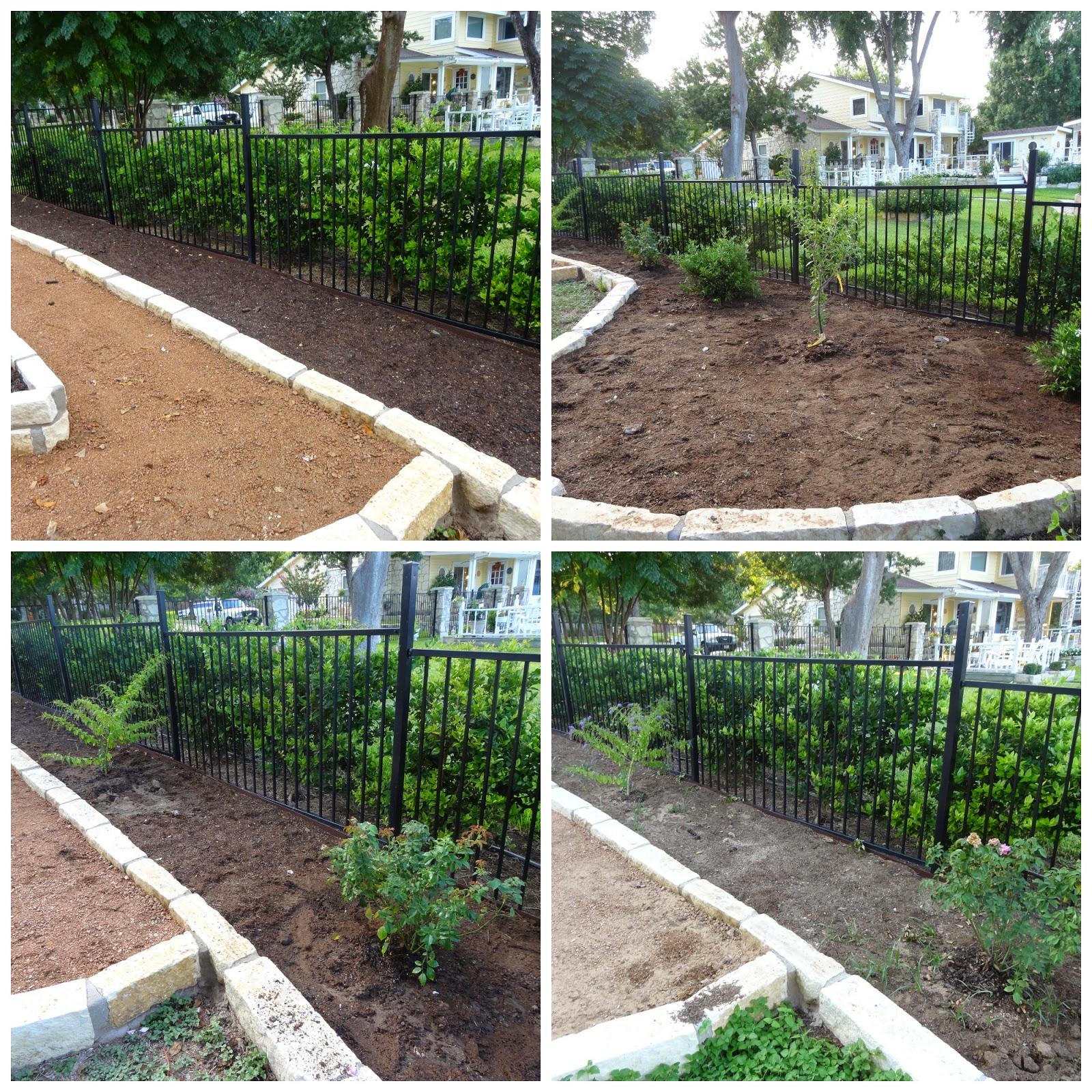 Rebecca39s Texas Garden 2014 Garden Bed Recap