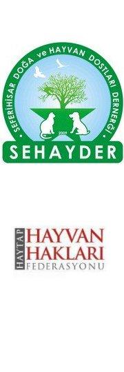 SEHAYDER