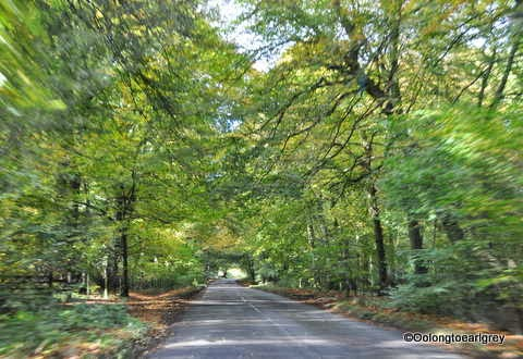 Drive through the Chilterns