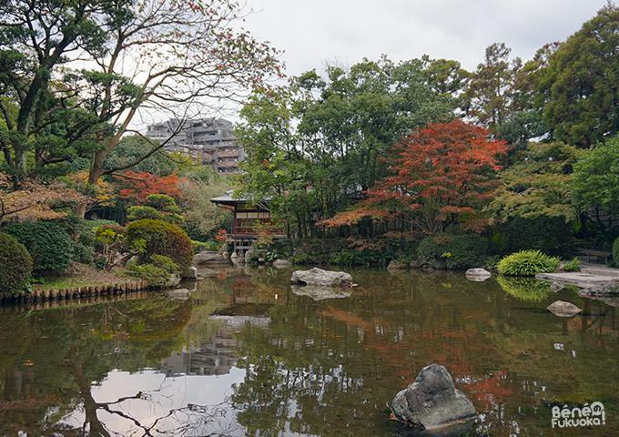紅葉 - 友泉亭公園、福岡
