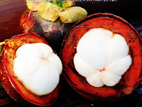 manfaat buah manggis dan khasiat buah manggis