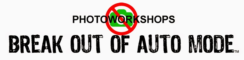 photoworkshops.biz