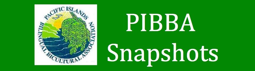 PIBBA Snapshots