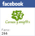 https://www.facebook.com/pages/Carmen-y-amigs/138126316213289?ref=hl