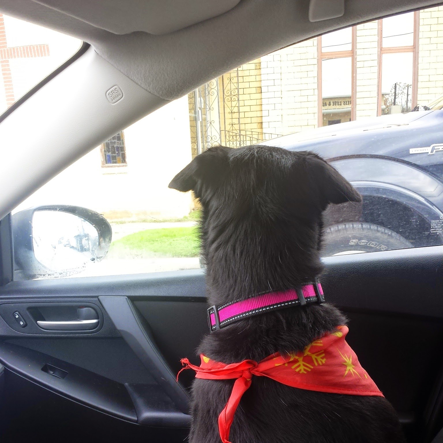 She is on the look out for adventure.