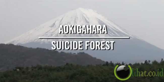 Co.id] - film dokumenter yang dibuat oleh azuya hayano tentang hutan