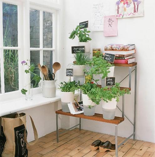 blog de decora o arquitrecos horta na cozinha fa a