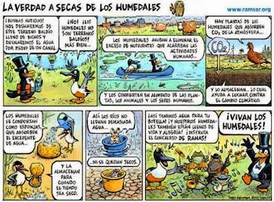 http://2.bp.blogspot.com/-udPjvIHQTX8/UQxIBNX2v-I/AAAAAAAAHfc/6VoF61QoZfo/s1600/humedales+d%C3%ADa+de.jpg