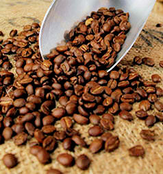 how to make coffee using ground coffee beans