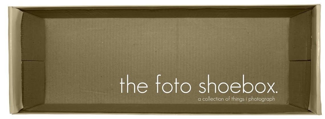 the foto shoebox.