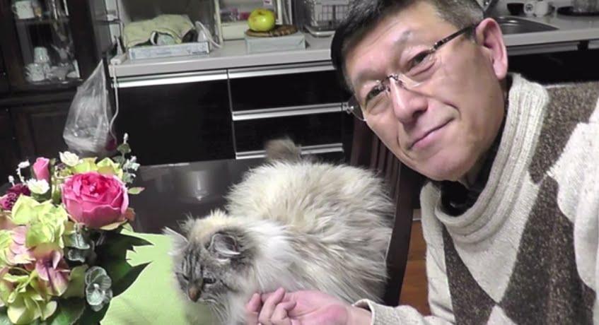 秋田県、佐竹知事が「無類の猫好き」とTVで紹介されていたので調べてみた。