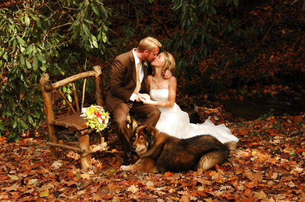 Autumn Wedding2