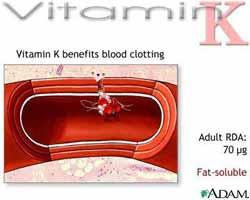 Sejarah Mengapa Disebut Vitamin K