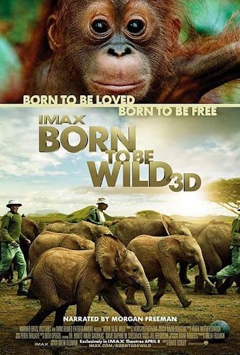 Nacido para ser libre (BRRip 3D FULL HD Español latino)